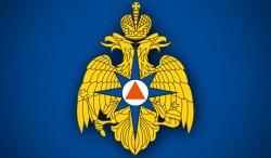 МЧС РФ будет считать людей в зоне ЧС при помощи сим-карт-wpid-23432