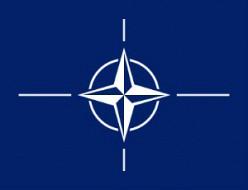 НАТО обсудит кибернетическую безопасность стран альянса-wpid-466381