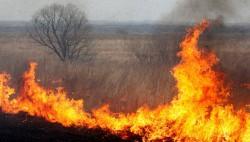 Астраханские власти планируют в 60 раз поднять штрафы за поджог травы-wpid-616550536