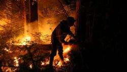 Лесной спецназ Приморья пополнили 18 молодых десантников-пожарных-wpid-718253600