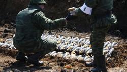 Ущерб от ЧП при утилизации боеприпасов в РФ достиг 11 млрд рублей-wpid-905551991
