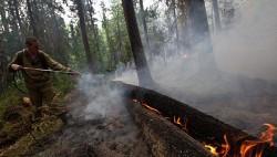 Пожарную безопасность в томских лесах пока нарушают только предприятия-wpid-951716189