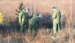 Разминирование двух полигонов в Крыму намерены начать саперы МЧС-wpid-969228695